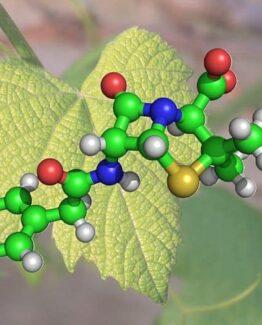 Fytokemikalier